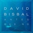 David Bisbal Antes Que No