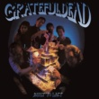 Grateful Dead Built To Last