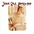 John Cale The Endless Plain of Fortune