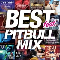 V.A. BEST feat. PITBULL MIX