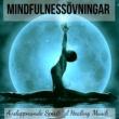 Avslappning Sound Sömncykel (Meditation Ångest Musik)
