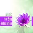 Calming Music Ensemble
