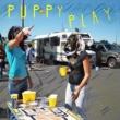 Splash Puppy Play