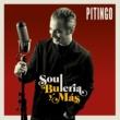 Pitingo Soul, Bulería y más