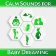 Gentle Baby Lullabies World