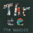 The WANDER 流星群