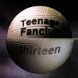 Teenage Fanclub Thirteen