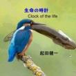 起田健一 生命の時計