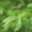 Glenn Heaton/Geoff McGarvey Forest