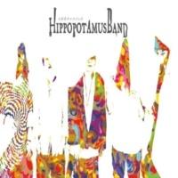 Hippopotamus Band NoOto