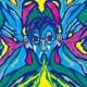 SALU THE GIRL ON A BOARD feat. 鋼田テフロン