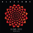 ブロッサムズ Blown Rose [Alan Braxe Remix]