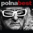 ミッシェル・ポルナレフ Polnabest