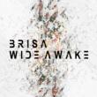BRISA Once