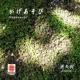 亜矢羽 Sound of KYOTO~すきま~/かげあそび