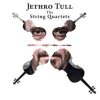 Jethro Tull Bungle (Bungle in the Jungle)