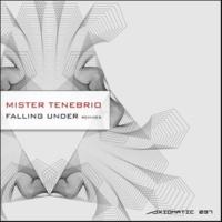Heavenchord & Mister Tenebrio & Denny Kay & Coma Soul & Helen Bass Falling Under Remixes
