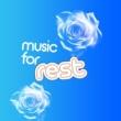 Deep Sleep Music Maestro