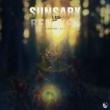 Li'lith Sunsary