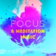 Mindfulness Meditation Music Spa Maestro