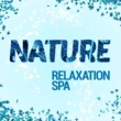 Relaxing and Healing Sounds of Nature