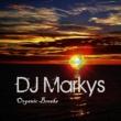 DJ Markys Organic Breaks