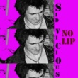 Sid Vicious Search and Destroy