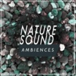 Nature Sound Ambience Morning Woodland
