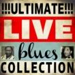 Willie Dixon Rock Me, Baby (Live Version)