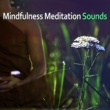 Relaxation & Meditation Academy