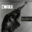 Corax Brigantia