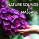 Beauty Spa Music Collection Nature Sounds for Massage ‐ Soft Sounds for Spa, Relaxing Massage, Stress Free, Spirit Calmness