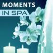 Wellness Spa Oasis Lotus Flower