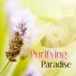 Unforgettable Paradise SPA Music Academy Hot Stone Massage