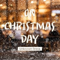 Unknown Dress On Christmas Day
