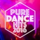 Dance Hits 2014 & Dance Hits 2015 Pure Dance Hits 2016