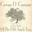 Cavan O'Connor The White Cliffs of Dover