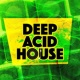Acid House Deep Acid House