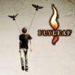 フライリーフ Flyleaf
