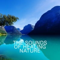 The Healing Sounds of Nature The Sounds of Healing Nature