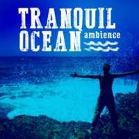 The Relaxing Sounds of Water Tranquil Ocean Ambience