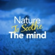 Zen Natural Meditation Nature to Soothe the Mind