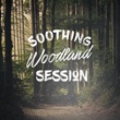 Soothing Sounds Soothing Woodland Session