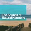 Rest & Relax Nature Sounds Artists,Sleep Music with Nature Sounds Relaxation&Sleep Songs with Nature Sounds The Sounds of Natural Harmony