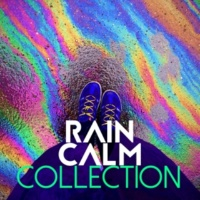 Rain Sounds Nature Collection Rain Fills the Barrell