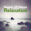 Sounds of Nature Relaxation Sounds of Natural Relaxation