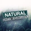 Natural Forest Sounds Natural Forest: Soundscapes
