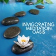 Meditation Oasis Invigorating Meditation Oasis