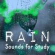 Rain Sounds & White Noise Rain Sounds for Study