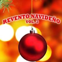 NMR Digital Revento Navideño, Vol. 3